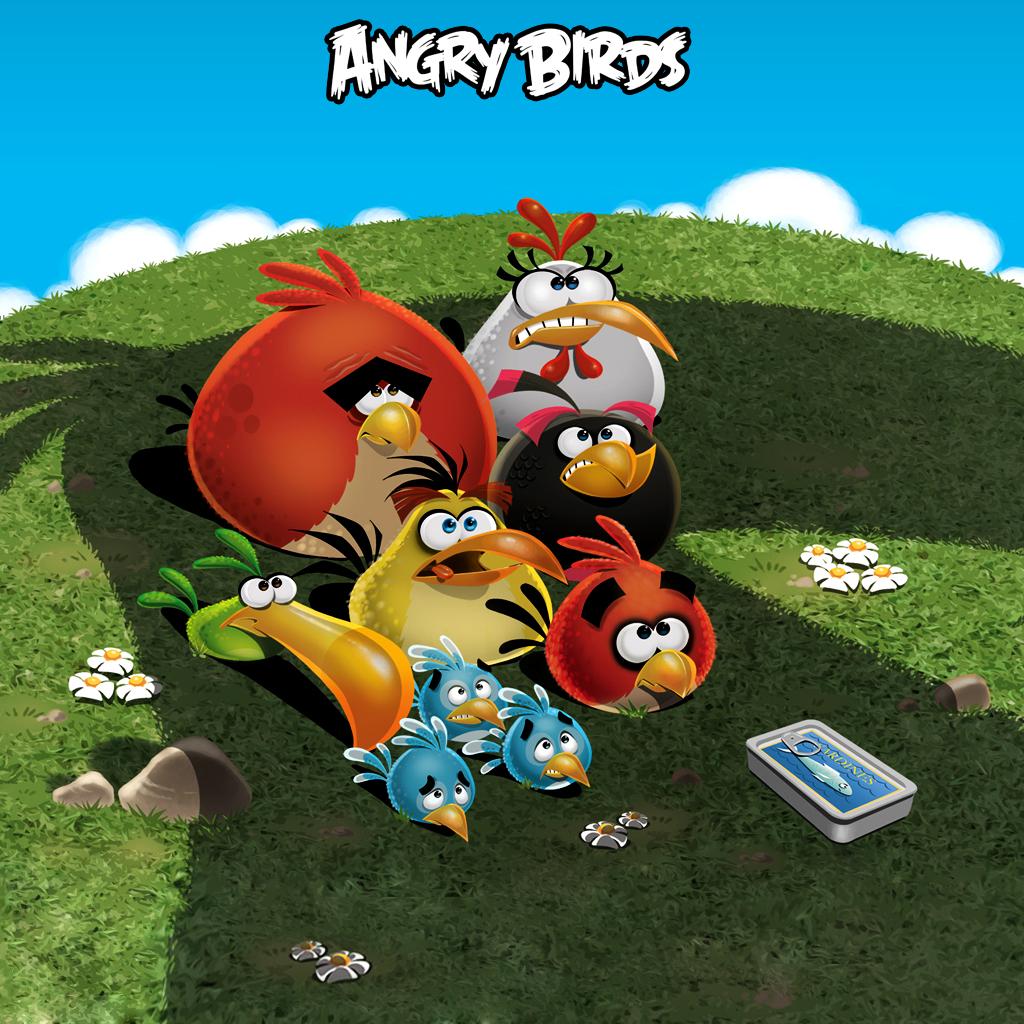 Angry Birds – Kuş Fırlatma Oyunu