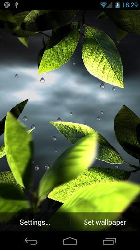 fresh-leaves-live-wallpaper-3