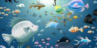 Deniz ve Okyanus Duvar Kağıdı